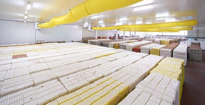 Les tendances du marché des ovoproduits en France
