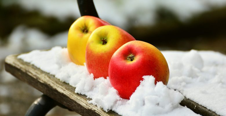Quels légumes planter en hiver ?